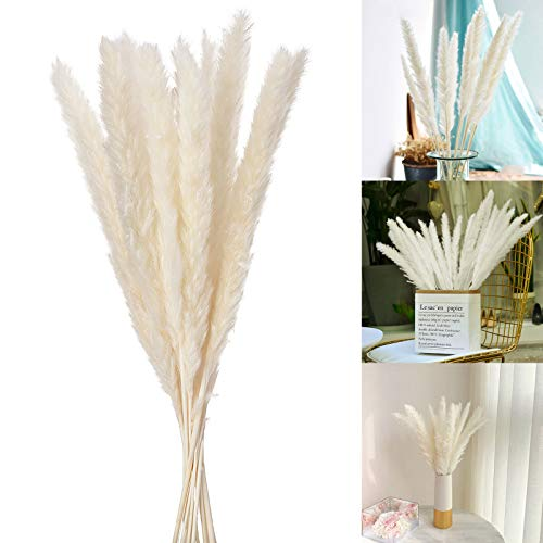 Wisolt 15 piezas de decoración de césped de pampas, pampas secas, ramo de hierba blanca de pampas artificial para el hogar, sala de estar, boda, fotografía, decoración de hotel, color blanco
