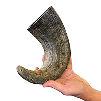 WhiteTail Naturals Water Buffalo Bully Horn  Extra Large  All-Natural Dog Chew and Training Treat | High Protein Low Fat Grain Free | Promote Dental Teeth and Gum Health