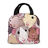 Men Women Tote Lunch Bag Handbag ,Rat Pile Lunch Organizer Portable Insulated Lunch Box For Work School Picnic Travel
