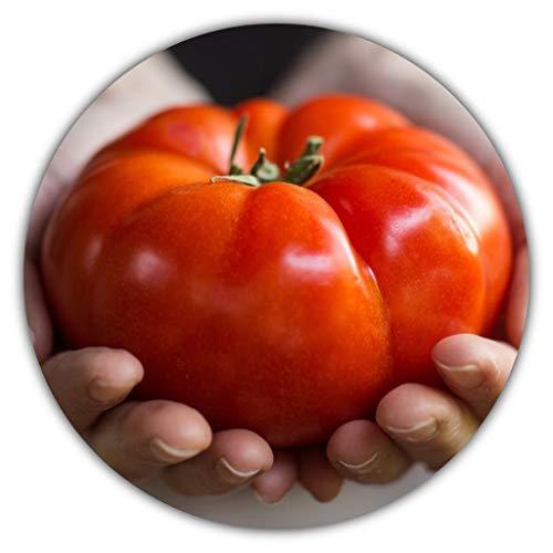 "Tomatensamen""Roter saftiger Riese"" / ca. 50 Samen/Riesentomate/Gemüsesamen/Selbstversorger"