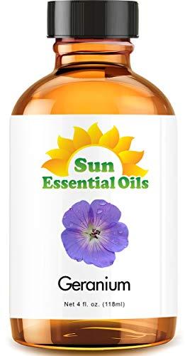 Geranium (Egypt) (Large 4 Ounce) Best Essential Oil