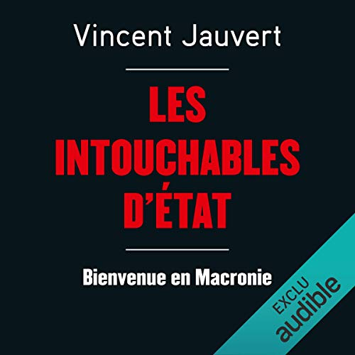 Les intouchables d'état audiobook cover art