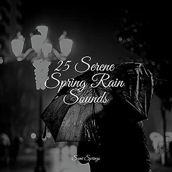 25 Serene Spring Rain Sounds
