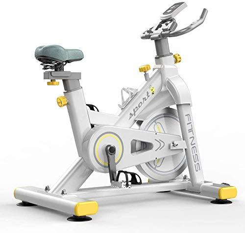 Lloow Controlado magnéticamente Silencio Bicicleta estática, Cubierta Bicicleta estática, 250 kg de Carga del Pedal, Hogar La pérdida de Peso de Fitness Equipo de Ejercicio, Que Forma eficaz