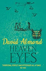 Heaven Eyes book cover