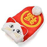 Coral Fleece Pet Cat Clothing Winter Warm Casual Cat Hoodie Coat for PoodleDogs XS-XL,as Show,S