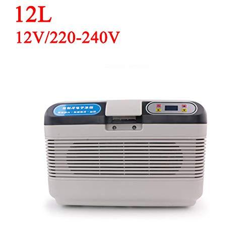 ANJIN DC12V/AC220V-240V Mini-koelkast voor auto en thuis, 12 l, draagbare thermo-elektrische koelbox/verwarmingsbox voor reizen en campin