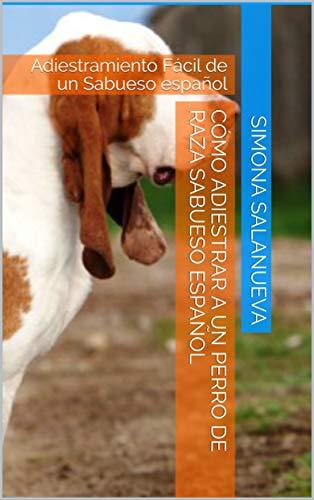 Cómo Adiestrar a Un Perro de Raza Sabueso español: Adiestramiento Fácil de un Sabueso español