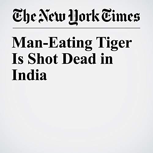 Man-Eating Tiger Is Shot Dead in India audiobook cover art