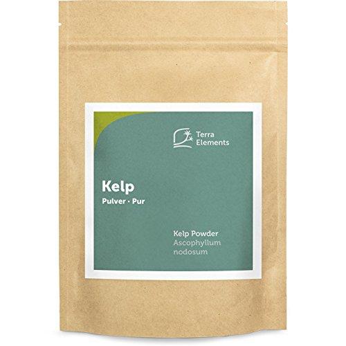 Terra Elements Kelp Pulver, 250 g I Knotentang I Braunalge I Ascophyllum nodosum I Wildwuchs I 100% rein I Vegan I Rohkost