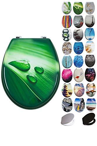 Grafner® MDF WC Sitz mit Absenkautomatik viele schöne Motive zur Auswahl - stabile Qualität - einfache Monatge WC Deckel Klobrille Softcolse (Green Water)
