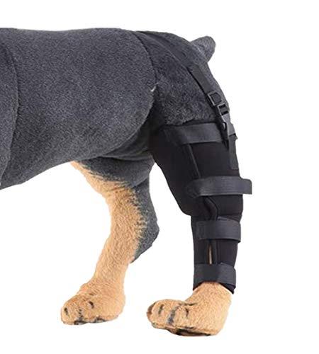 WXFEXIA Hunde-Bandage für das linke Hinterbein – schützt Wunden und Heilung durch Arthritis, um Verletzungen und Verstauchungen oder Gehen zu verhindern (1 Stück, L)