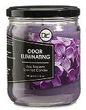Lilac Blossom Candle - Odor Eliminating...