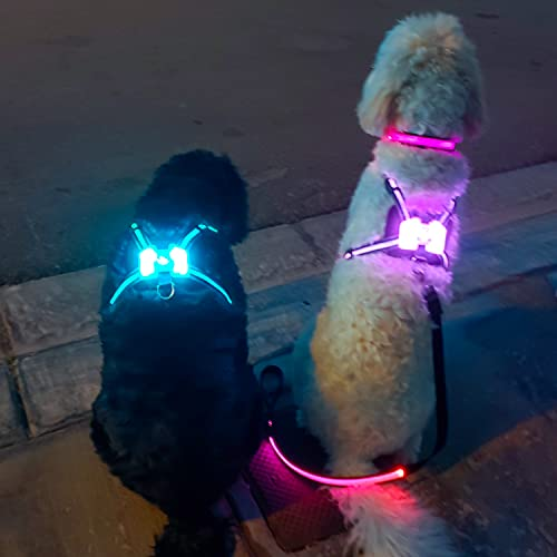 LUV OUR ADORABLE PETS (Large) –Safety Dog Harness–LED Dog Harness-Easy Walk, 360 Illumination–Rechargeable 5 Hour Battery–3M Reflecting Material, Adjustable, Removable-6 Solid Colors, Color Rotation