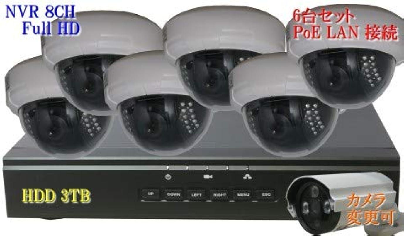うれしい破滅一見防犯カメラ 210万画素 8CH POE レコーダー ドーム型 IP ネットワーク カメラ SONY製 6台セット LAN接続 HDD 3TB 1080P フルHD 高画質 監視カメラ 屋内 赤外線