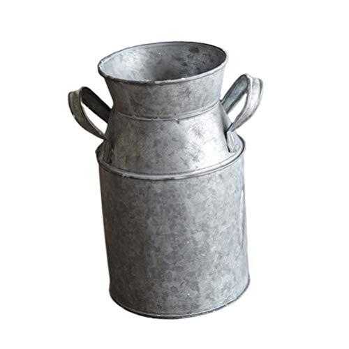 Hemoton Jarrón de hojalata antiguo, jarrón de hojalata, re