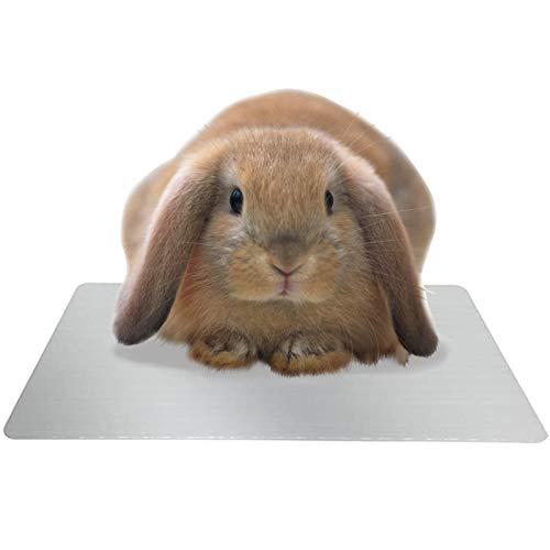 LeapBeast Alfombra de Enfriamiento para Mascotas, Almohadilla de Autoenfriamiento Animales Pequeños para Los Hámsteres, Conejo, Gatos, Conejillo de Indias, Animales Pequeños, Verano (XL)