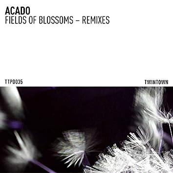 Fields of Blossoms (Remixes)