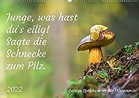 Junge, was hast du`s eilig (Wandkalender 2022 DIN A2 quer): Lustige Sprichwoerter fuer Pilzfreunde (Monatskalender, 14 Seiten )