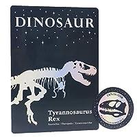 [下敷き]ステッカー付両面シタジキ/LOVE DINOSAUR スパークル 恐竜