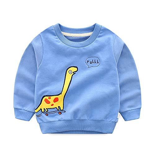 ARYYX Sweatshirt pour Enfant Pull Garçon 3D Prints Dinosaure Pull-Over Sweat Classic Sport School Automne Hiver Âge 2-8 Ans