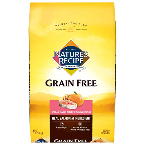 Nature's Recipe Grain Free Dry Dog Food, Salmon,...