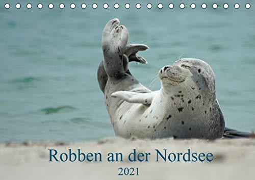 Robben an der Nordsee (Tischkalender 2021 DIN A5 quer)
