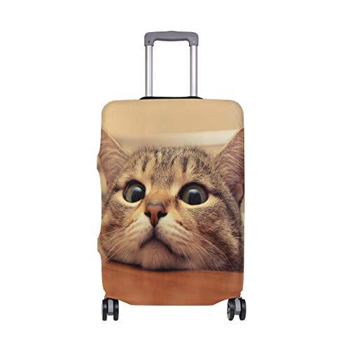 AJINGA Curious Kitty Cat - Funda Protectora para Maleta de Viaje, tamaño S 18-20 Pulgadas