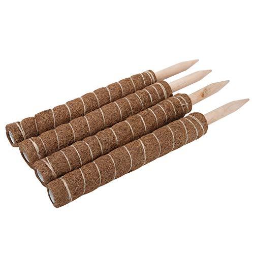 Nunafey Varilla de Musgo, Varilla de Musgo, 45CM 4PCS Fibras de Musgo de cáscara de Coco Naturales Resistentes al Desgaste para extensión de Soporte de Plantas Plantas de Interior trepadoras