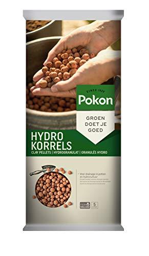 Pokon Hydrogranulat, Blähton, Hydrokultur Tongranulat für Topf- und Zimmerpflanzen, Körnung 8/16mm, 5 Liter