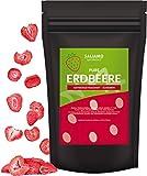 Saliamo gefriergetrocknete Erdbeeren - Erdbeeren getrocknet - Erdbeerchips - in Scheiben - pure Frucht - 100 % Erdbeeren - 100g Packung