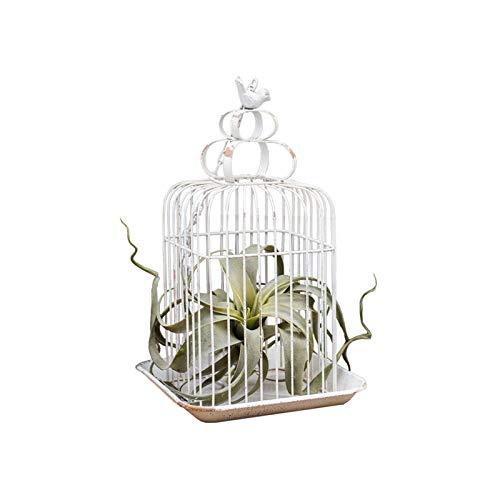 BFSHY Enrejado De Obelisco De Jardín, Soporte De Flores De Enrejado De Metal De Hierro Forjado para Enredaderas, Jardineras De Jardín De Jaula De Pájaros Galvanizadas Rústicas
