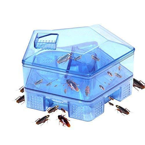 MARSRTH Multi Purpose Reusable Plastic Cockroach Bug Insects Catcher Killer Box