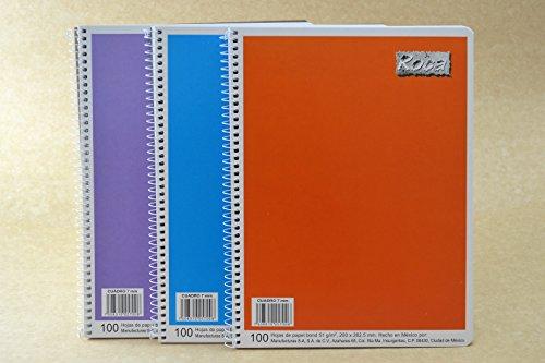 cuaderno cuadro aleman 100 hojas fabricante Roca