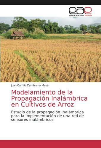 Modelamiento de la Propagación Inalámbrica en...