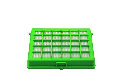 Green Label HEPA Filter für Rowenta Compacteo Ergo und City Space und Moulinex Compacteo Ergo, City Space und Accessimo Staubsauger (Vergleichbar mit ZR004501)