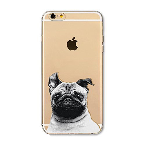 Chien curieux Design//Animaux comiques Collection Stuff4 Coque de Coque pour Apple iPhone 5//5S