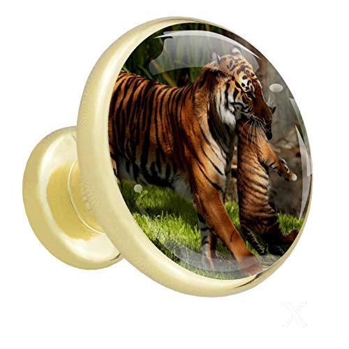 Schublade zieht Gold Tiertiger Schrankknöpfe 4er Pack Glas Kleiderschrank Knöpfe für die Dekoration 4er Pack 1.26x1.18x0.66in