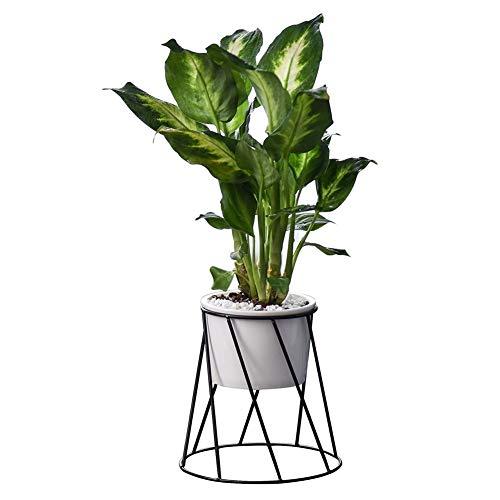 LLYU Succulent pot de fleurs stand de fleurs petit bureau créatif frais petit pot de fleurs en céramique
