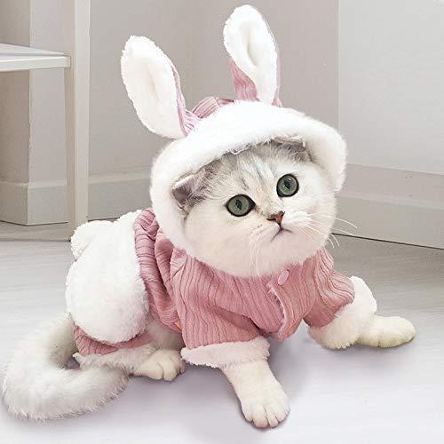 Ropa para Gatos Gato De Leche Pequeo Gato Britnico De Marioneta Corta Gato Suministros para Mascotas Invierno Clido Lindo Divertido Cuatro Patas Ropa De Otoo E Invierno M-Recomendado 5-8 kg