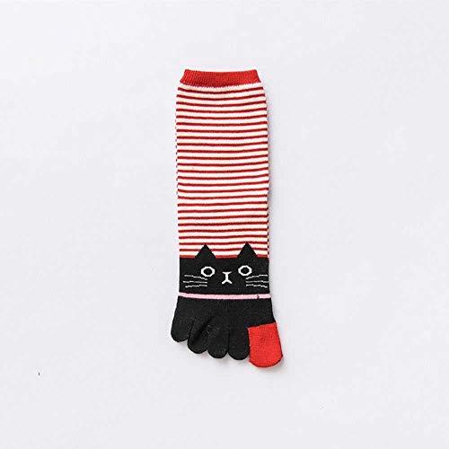 ZHANGNUO Fashion Lady Women Girls Cartoon Cat Toe Calcetines