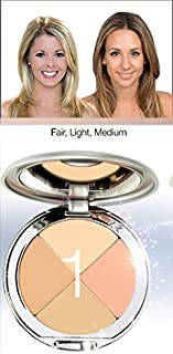 Christina Cosmetics Perfect Pigment 1 Compact: One Minute Miracle Makeup