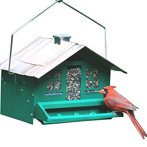 Perky-Pet Mangeoire oiseaux Squirrel-be-Gone anti-écureuil - Cabane métal avec toit - à suspendre ou à monter sur perchoir - Capacité max. 3,6 kg de graines multiples #339