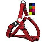 DDOXX Arnés Perro Step-In Air Mesh, Ajustable, Acolchado | Muchos Colores & Tamaños | para Perros Pequeño, Mediano y Grande | Accesorios Gato Cachorro | Rojo, XS