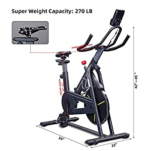 RHYTHM FUN Exercise Bike Indoor Cycling Bike Stationary Bikes Super Quiet Exercise Bike Magnetic Resistance Quiet Belt Cycle Bike for Home Cardio Workout with APP/LCD Monitor/Heavy Flywheel Home Gym