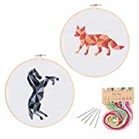 2刺繍スターターキット、パターンと英語の指示とプラスチック製の刺繍キット