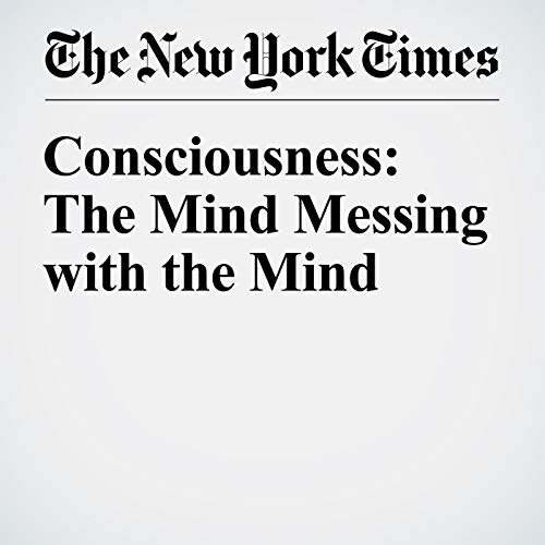 Consciousness: The Mind Messing With the Mind audiobook cover art