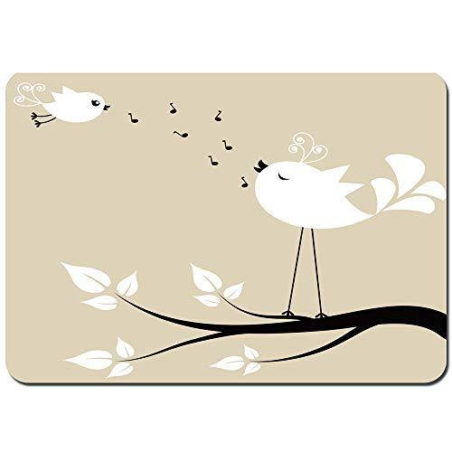 YANAIX Alfombra de Baño,Birds Two Birds on a Branch Cantando Canciones de Amor Amigo San Valentín Pareja Esperanza Viviendo,Súper Suave Multiuso Lavable a Máquina75x45cm