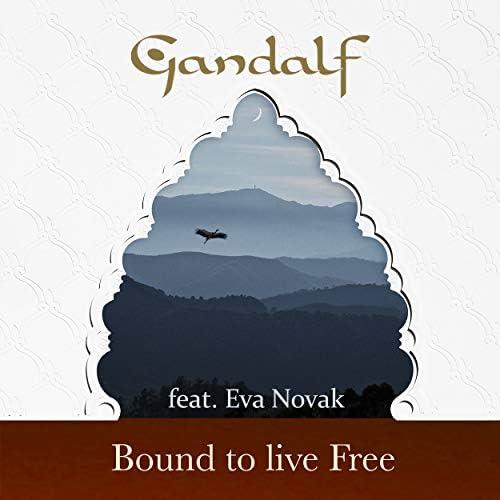 Gandalf feat. Eva Novak