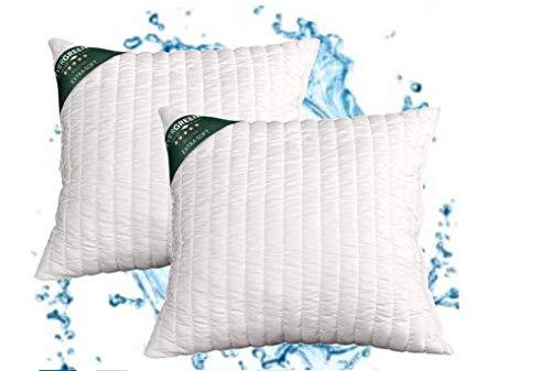 evergreenweb – Coussins Lit Paire Hauts 15 cm lavables en machine, 2 oreillers canapé Ameublement Maison ou extérieur avec rembourrage flocon Super Soft Doux Effet plume d'oie 50 x 50 cm